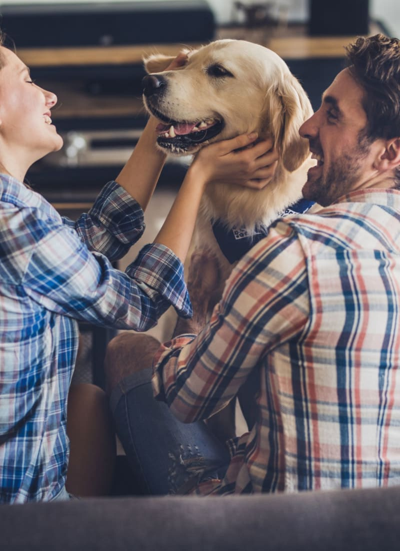 Two pets maximum per apartment at The Park at Flower Mound in Flower Mound, Texas