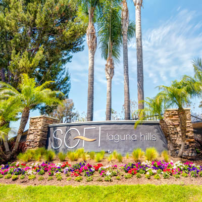 Our sign surrounded by beautiful wildflowers at Sofi Laguna Hills in Laguna Hills, California