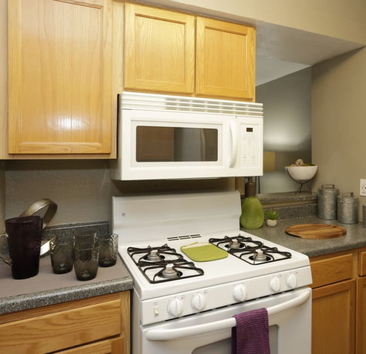 In-Home Features at EnVue Apartments in Bryan, Texas