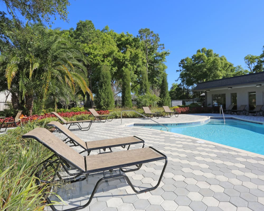 An outdoor oasis with a swimming pool near Southern Cove Apartments in Temple Terrace, Florida