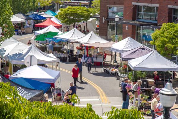 Saturday Market Street Fair outside of The Maverick in Burien, Washington
