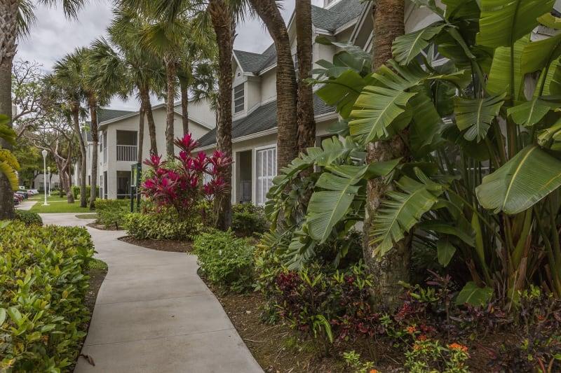 Lush outdoor gardens at Lago Paradiso at the Hammocks in Miami, Florida