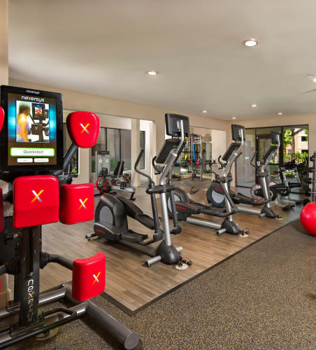 Fitness center at The Palisades at Paradise Valley Mall