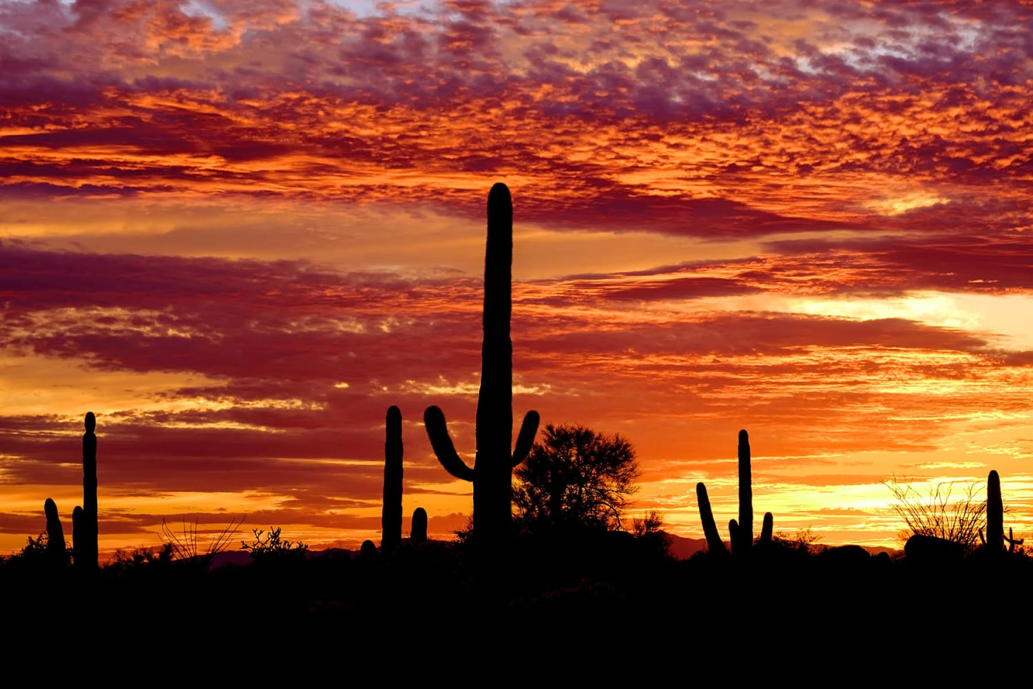 Beautiful sunsets at Casa Santa Fe Apartments in Scottsdale, Arizona