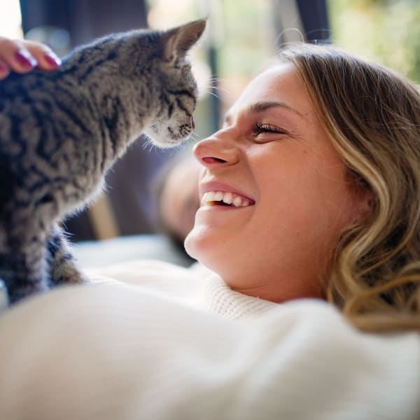 Resident and her cat loving their life living at Brio Apartment Homes in Glendale, California