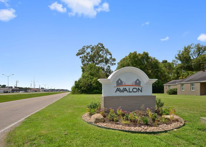 Avalon Apartment Homes neighborhood area