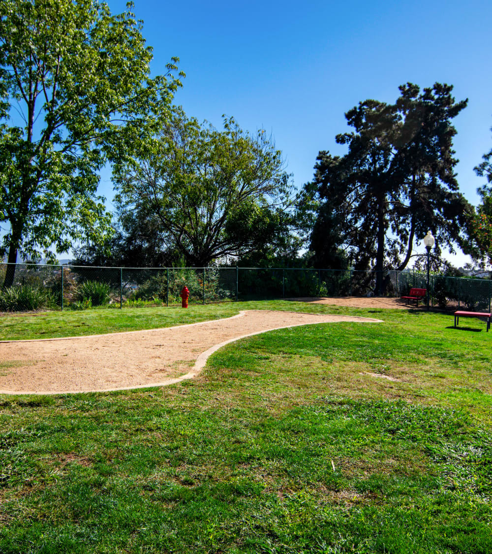 Well-maintained onsite dog park at Veranda La Mesa in La Mesa, California