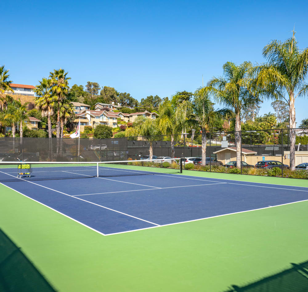 Onsite tennis courts at Harbor Point Apartments in Mill Valley, California