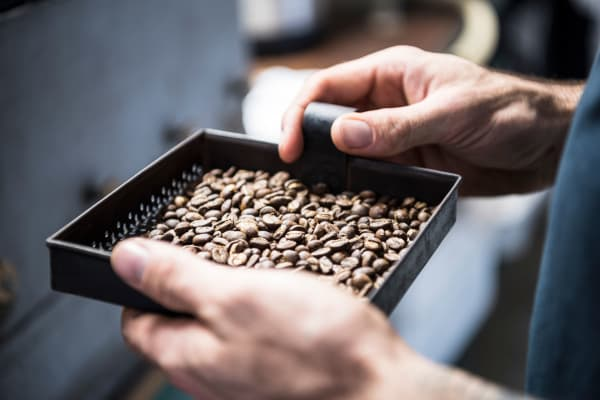 Freshly roasted coffee beans at coffee shop near Grant Park Village