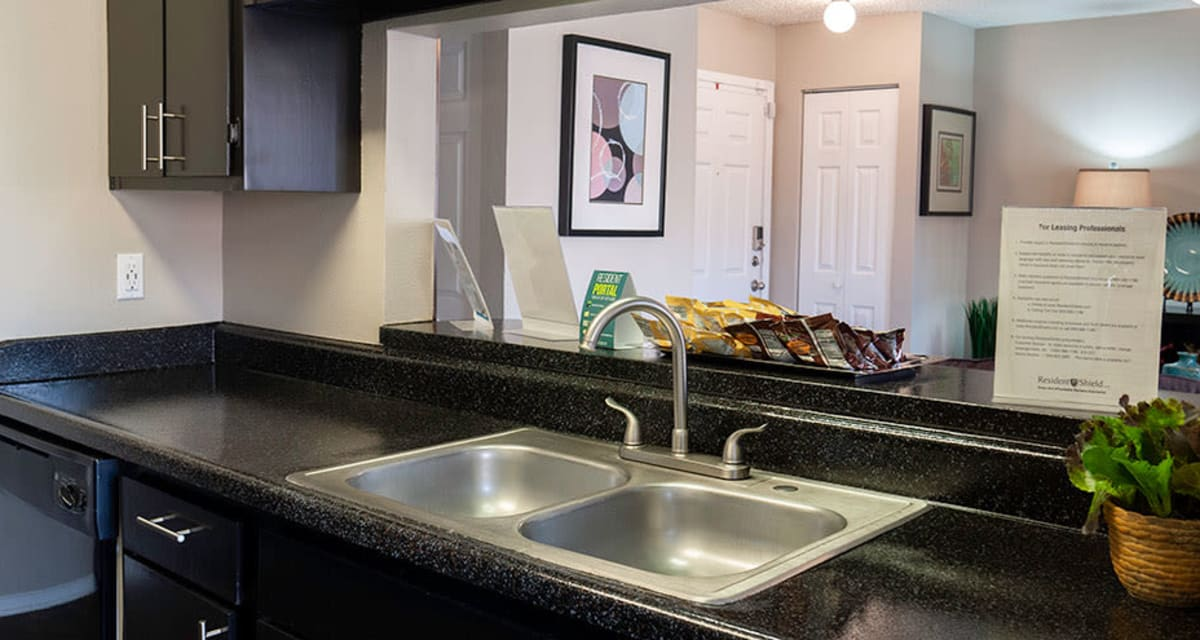 Stainless steel sink at Greentree Apartments in Carrollton, Texas