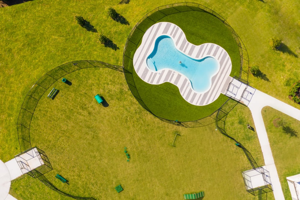 Aerial View of Dog Park at Luxor Club in Jacksonville, Florida