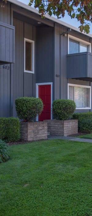 Grassy lawn for your furbaby at Spring Lake Apartment Homes in Santa Rosa, California