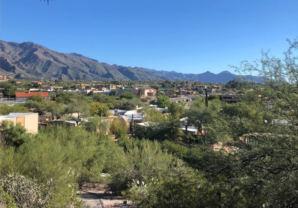 View from Elevation Apartments in Tucson, Arizona