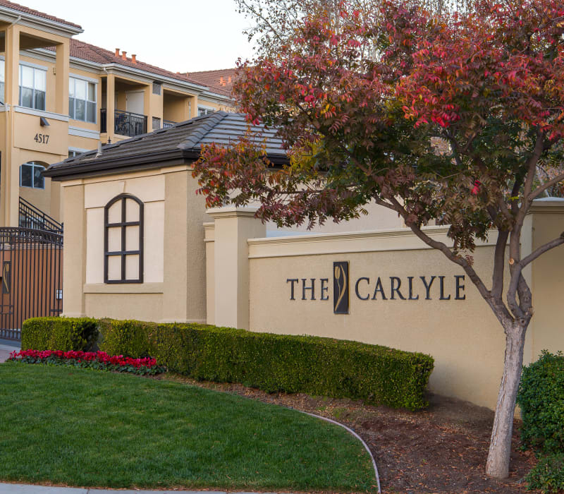 Front entrance with shrubs at The Carlyle in Santa Clara, California