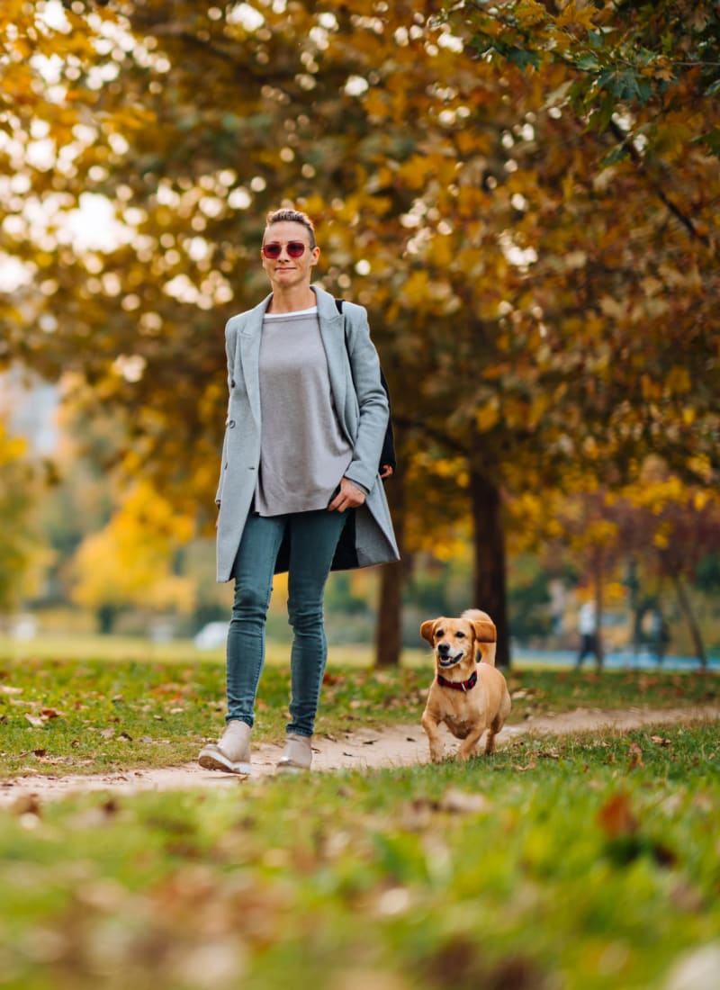 No pet weight limits at Austin Midtown in Austin, Texas
