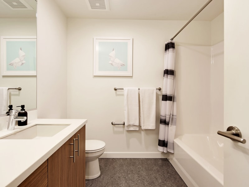 Beautiful bathroom at Rooster Apartments in Seattle, Washington