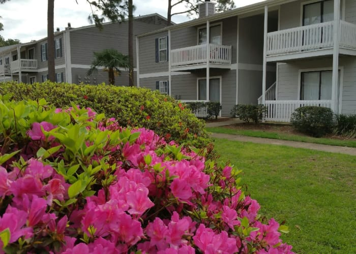 View of apartments at Park West in Mobile, Alabama