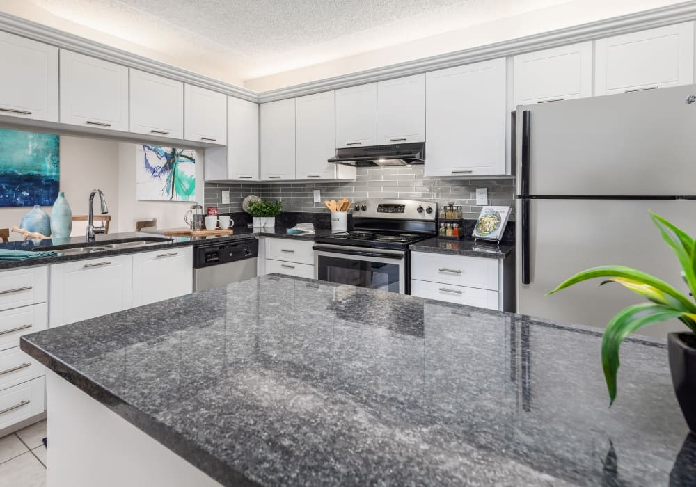 Modern kitchen with stainless steel appliances and granite countertops at Verse at Royal Palm Beach in Royal Palm Beach, Florida