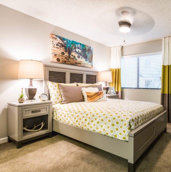 Cozy bedroom decorated with vibrant colors at 4127 Arcadia in Phoenix, Arizona