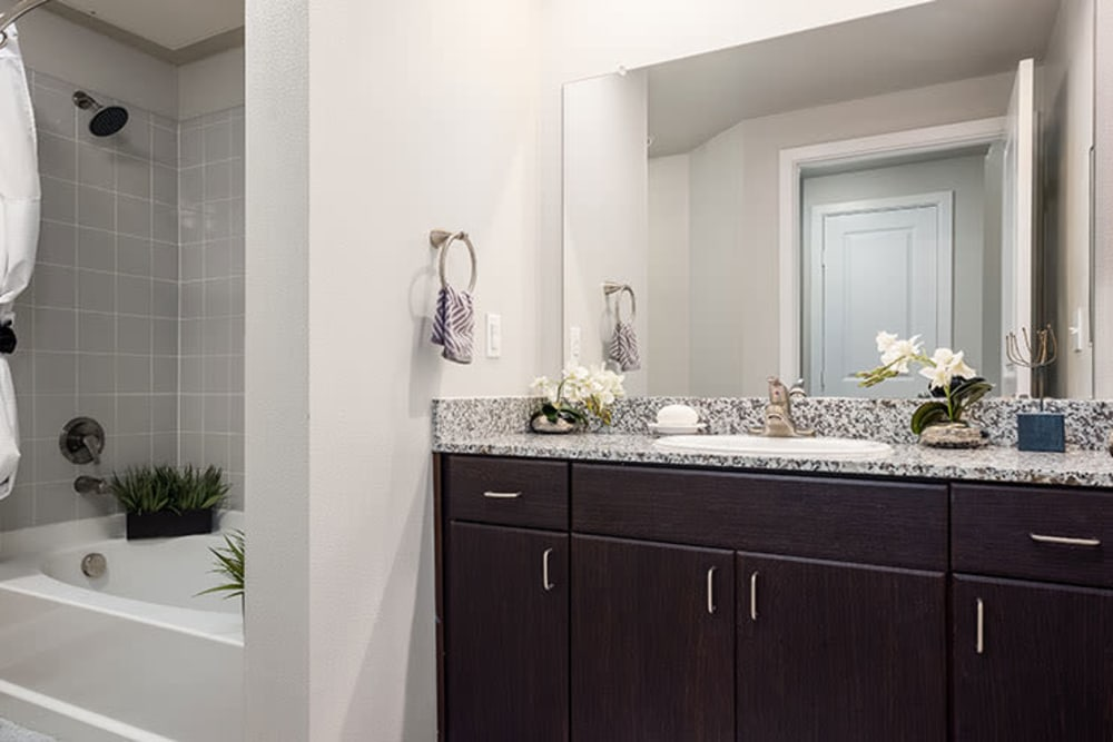 Spacious bathroom in apartment home at Addison Keller Springs in Addison