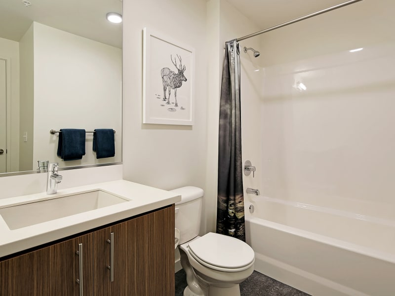 Bathroom at Rooster Apartments in Seattle, Washington