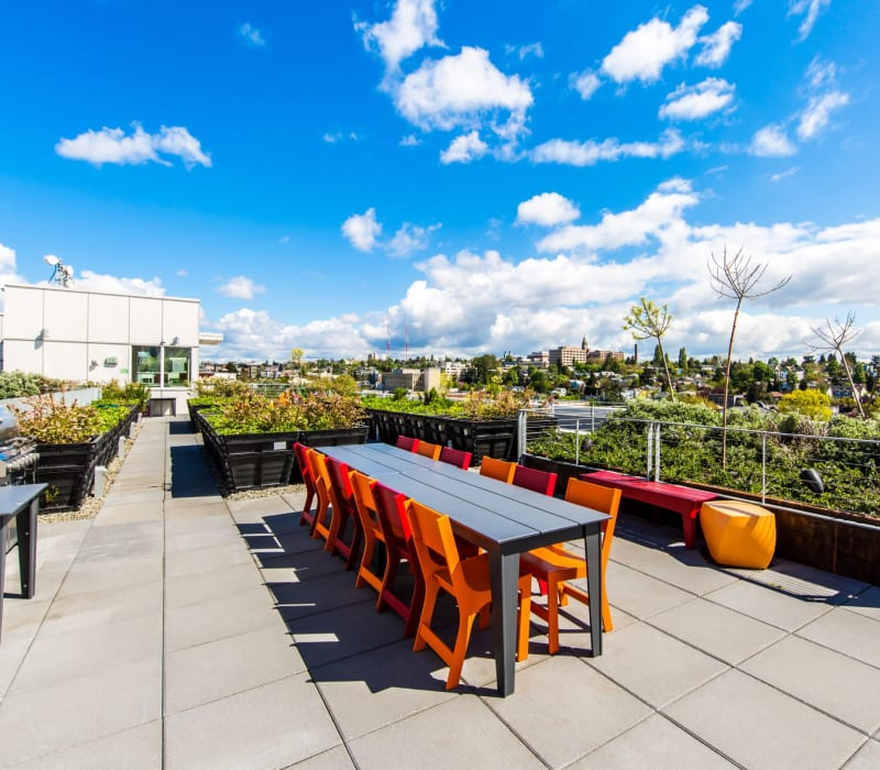 Community rooftop outdoor lounge at Anthem on 12th in Seattle, Washington