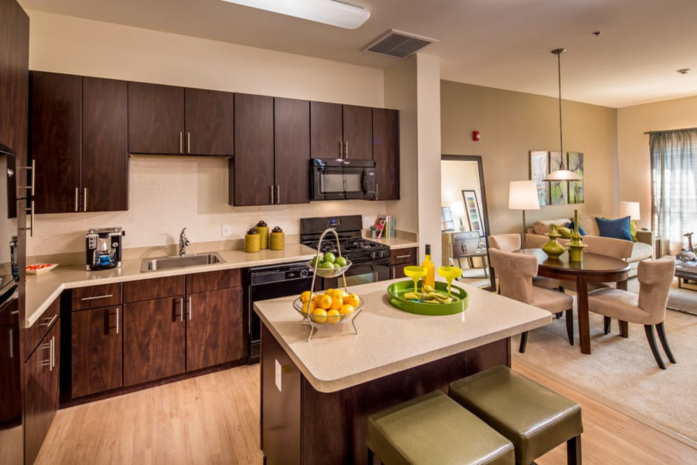 Kitchen with stainless steel appliances at The Grove Somerset in Somerset, New Jersey