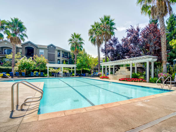 Pool view with palm trees and lush landscaping at Hawthorn Village Apartments in Napa