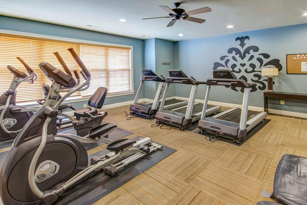 Full state of the art fitness center at Aspen Pines Apartment Homes in Wilder, Kentucky