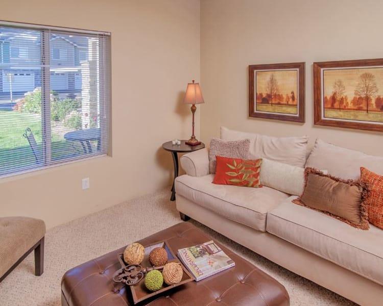 Luxury living room at Selway Apartments in Meridian