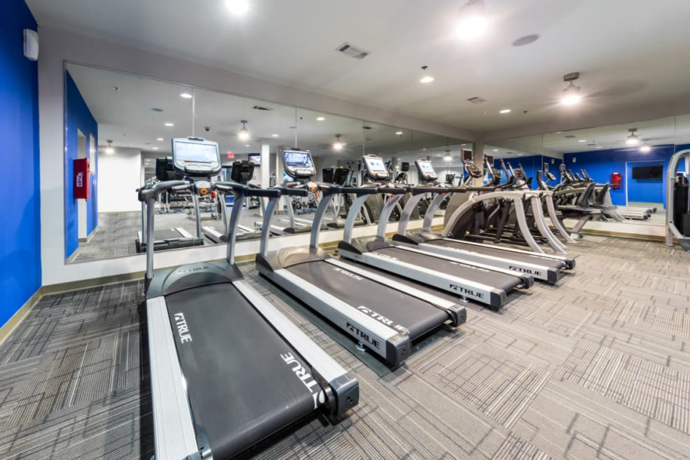 Cardio machines lined up in front of mirrors at Marq Eight in Atlanta, Georgia