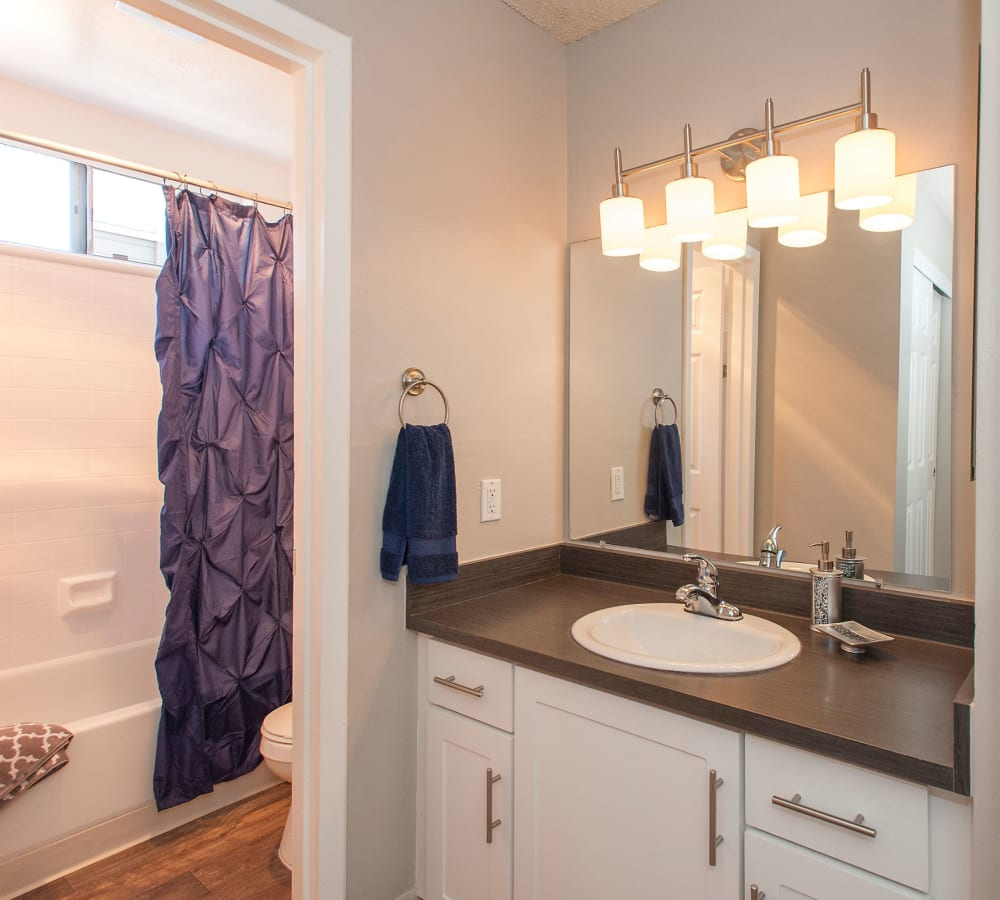 Master bathroom at Shadow Oaks Apartment Homes in Cupertino, California