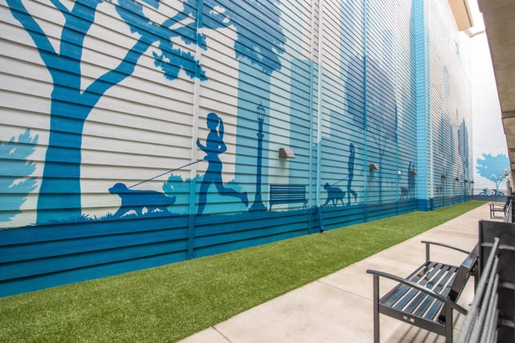 Bark park for residents and their pets to play in at Macallan at Ross in Dallas, Texas