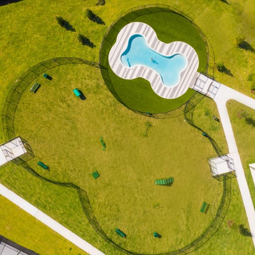 Awesome dog park with water play area at Luxor Club in Jacksonville, Florida