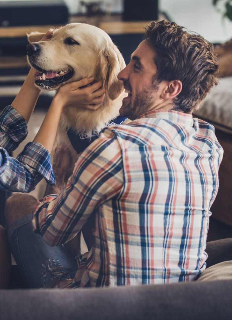 View our pet policy at Marquis at Crown Ridge in San Antonio, Texas