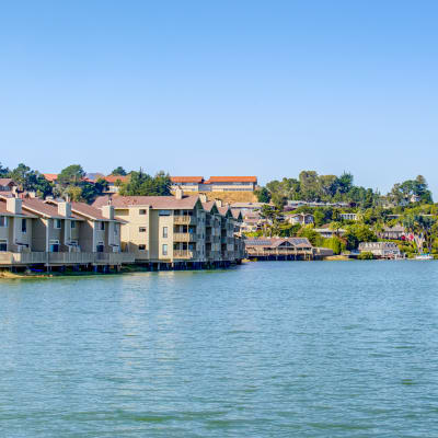Views of the bay from our waterfront property at Harbor Point Apartments in Mill Valley, California