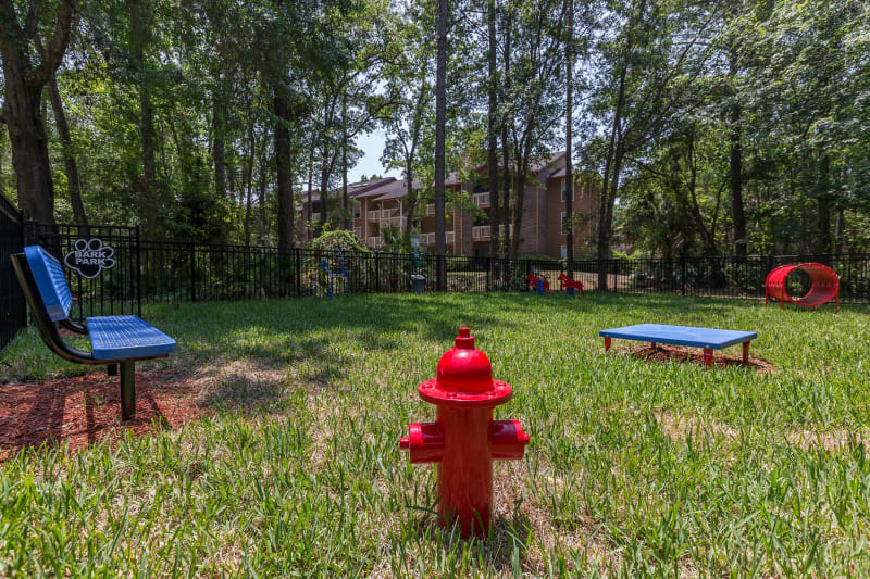 Dog park for residents at the pet friendly Belle Vista Apartment Homes in Lithonia, Georgia