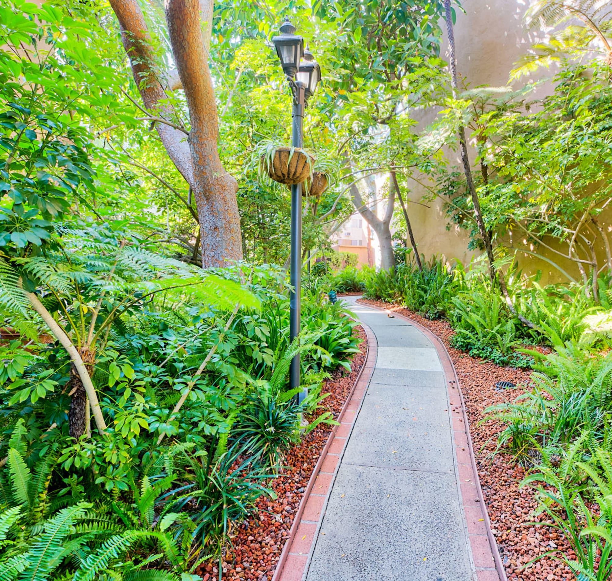 Lush landscaping along a path between resident buildings at Casa Granada in Los Angeles, California