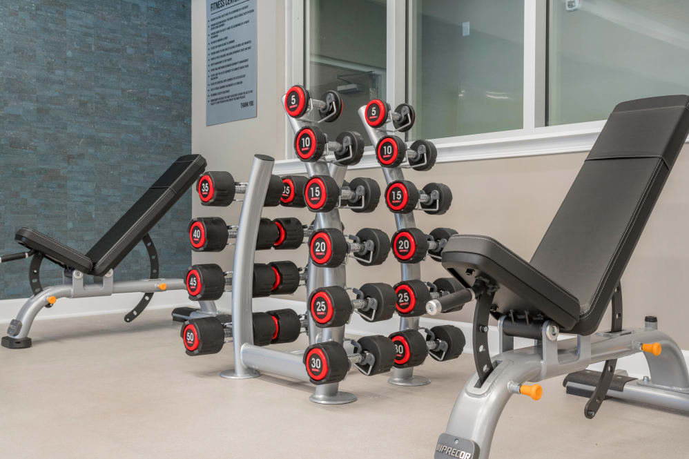 Alta Citizen offers a state-of-the-art fitness center in Newport News, Virginia