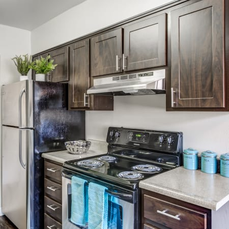 Renovated Brown Kitchen with stainless steel appliances at Royal Ridge Apartments in Midvale
