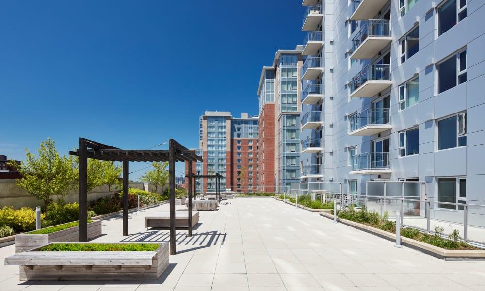 19Twenty Apartments gazebo in Halifax, Nova Scotia