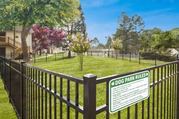 Dog park at The Flats at Arrowood in Charlotte, North Carolina