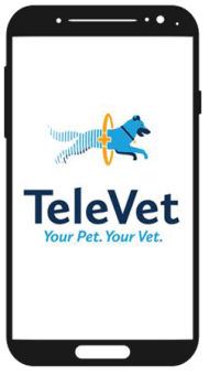 TeleVet is offered at Animal Care Center of Panama City Beach in Panama City Beach, Florida