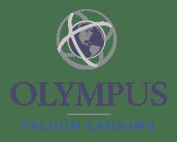 Olympus Falcon Landing