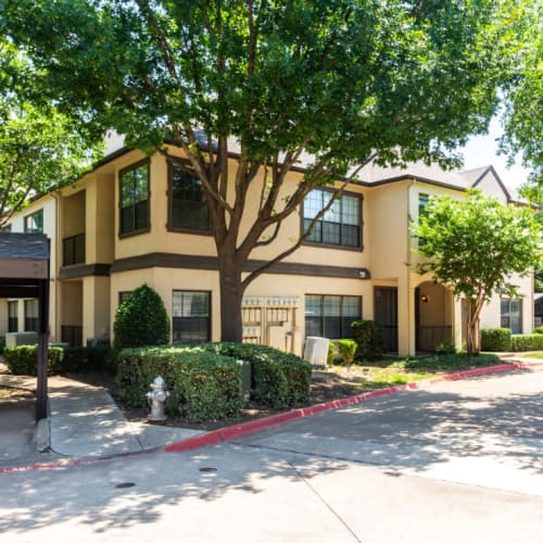 Resident referral bonus at Marquis at Waterview in Richardson, Texas