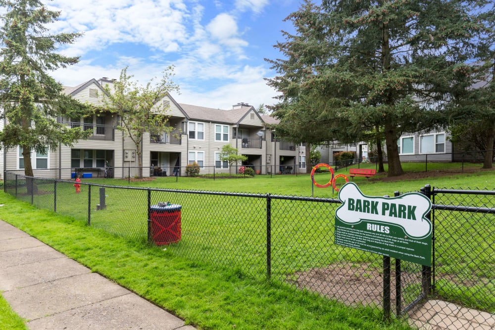 Have fun with your furry friend in the dog park at Meadows at Cascade Park Apartments in Vancouver, Washington