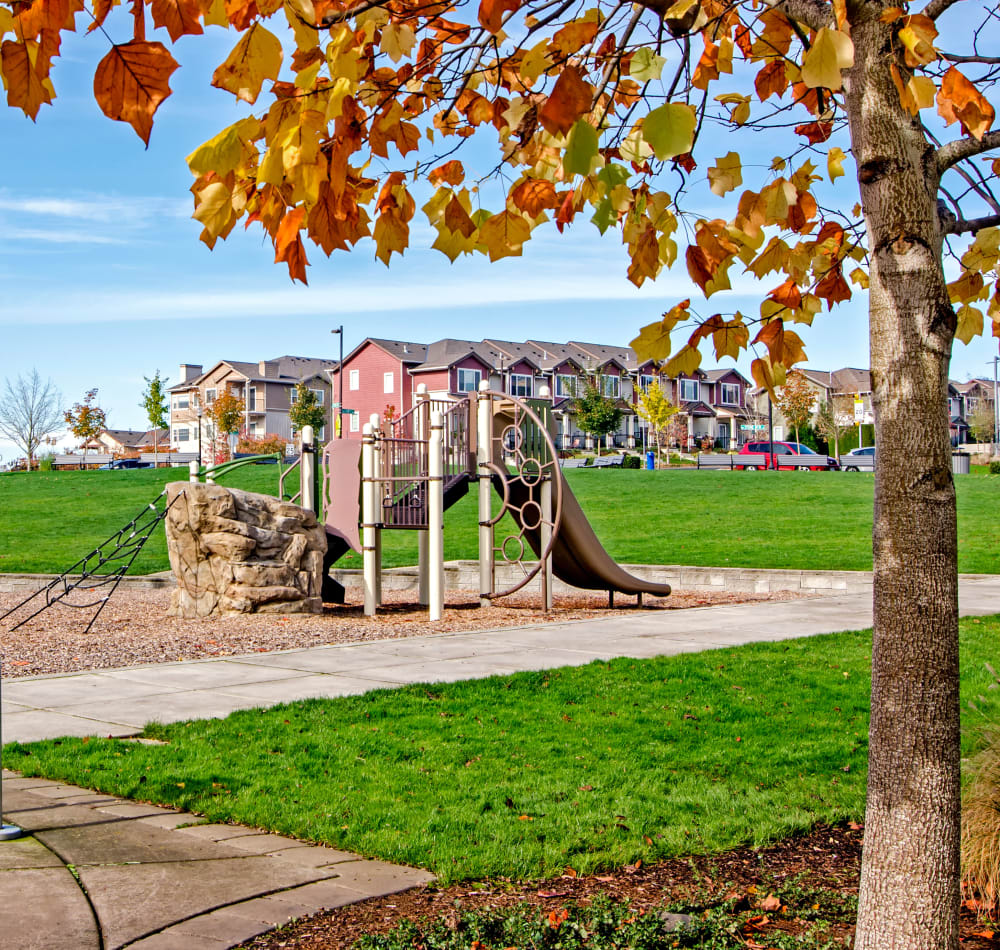 Onsite children's playground surrounded by beautiful green grass at Sofi at Cedar Mill in Portland, Oregon