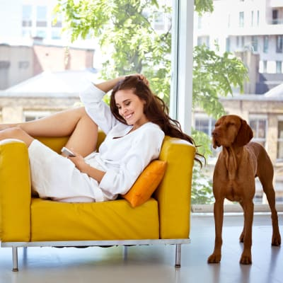Resident and her dog relaxing in the living room at Residences at 8 East Huron in Chicago, Illinois