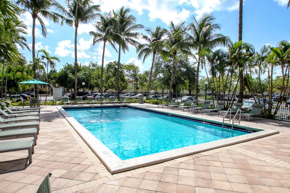 Sparkling swimming pool at Aliro in North Miami, Florida
