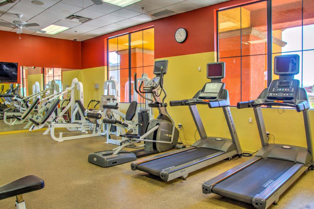 Fitness center at Oro Vista Apartments in Oro Valley, Arizona